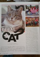 FURR on PAGE 8