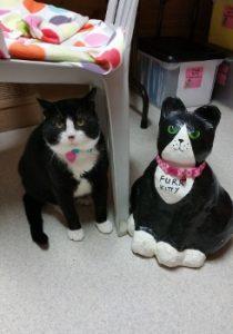 Tux & FURR Mannequin